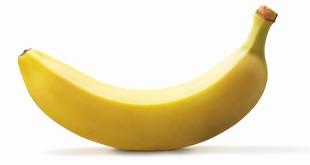 banana-penis